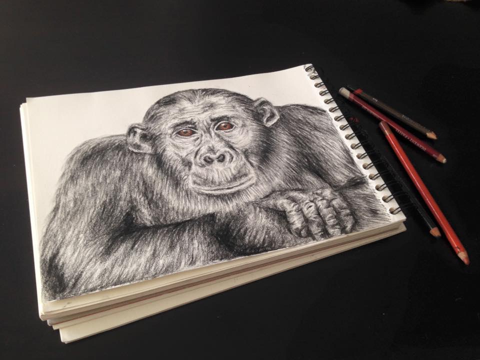 guy_ape.jpg