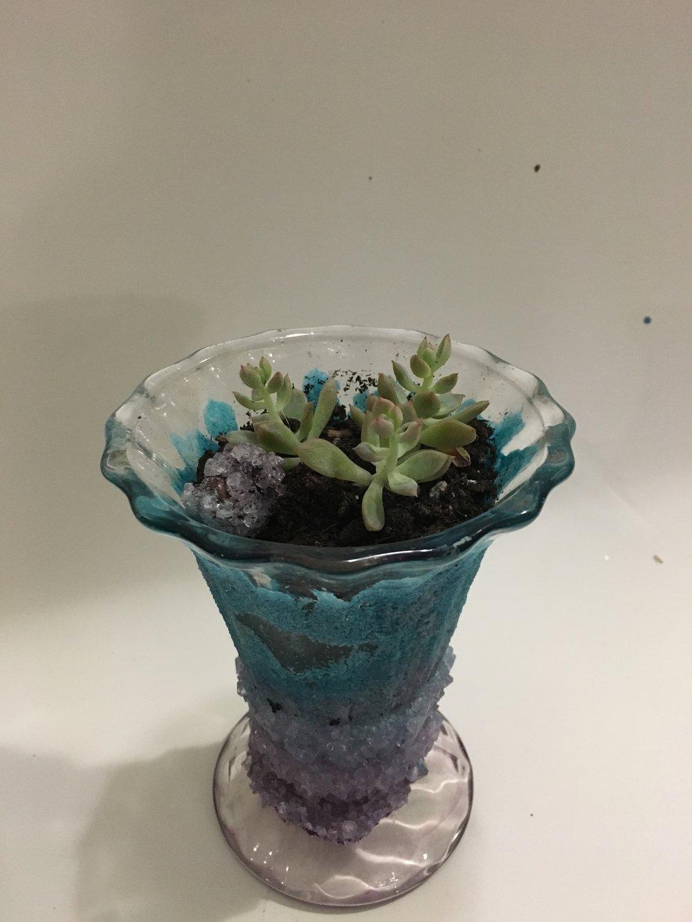 blue purple planter.jpg