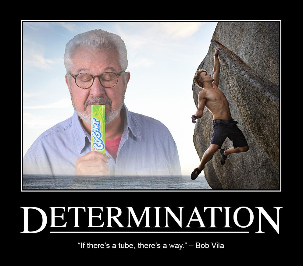 GoGurt_Determination.jpg