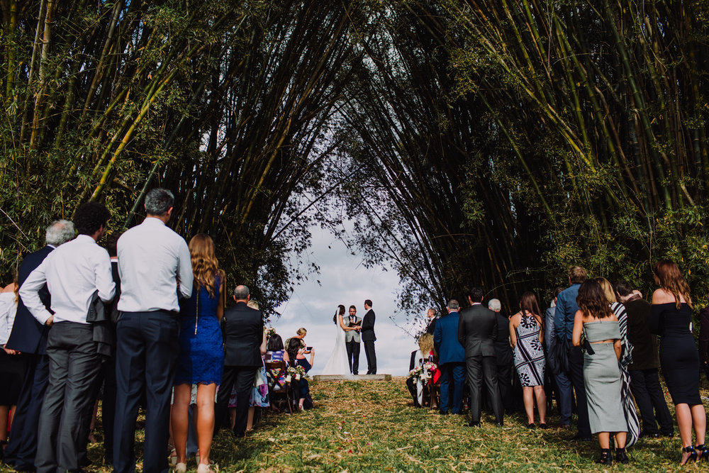 Gold-Coast-Wedding_The-Follans_associate_photographer-536.jpg