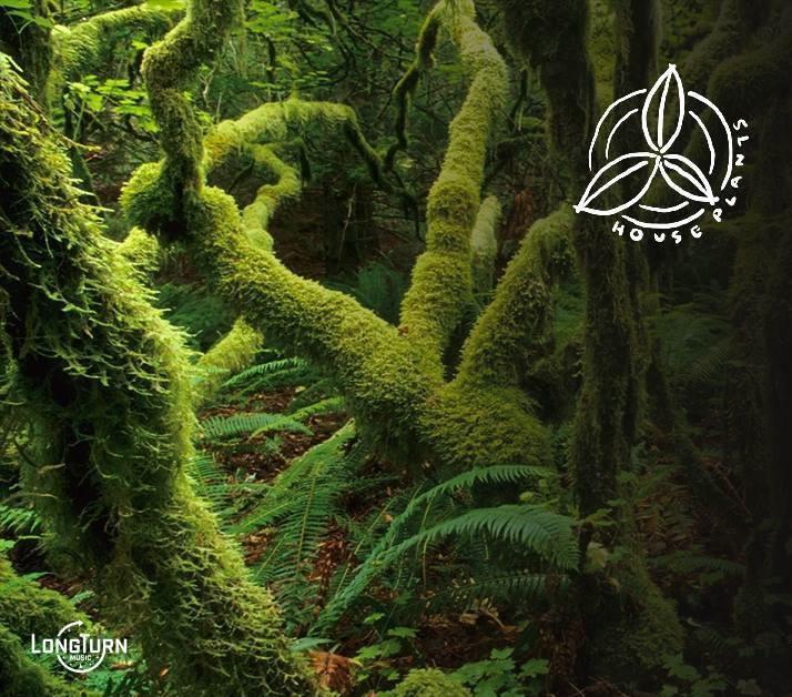 Lodge: House Plants at Spirit feat. Naeem — Spirit on