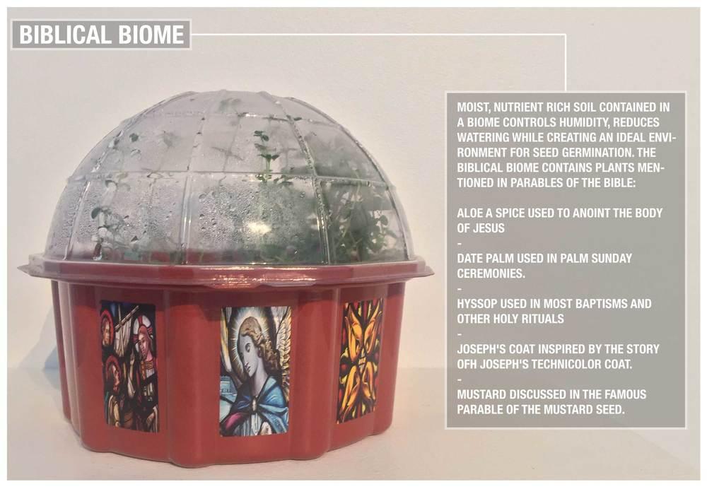 biome.jpg