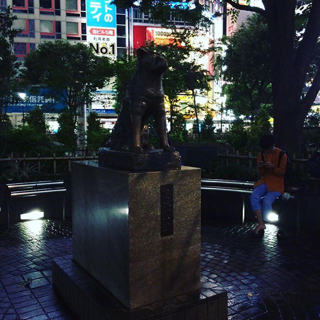 Japan trip  #travel #traveling #vacation #visiting #instatravel #instago #instagood #trip #holiday #photooftheday #fun #travelling #tourism #tourist #instapassport #instatraveling #mytravelgram #travelgram #travelingram #igtravel #japan #tokyo #shibuya #hachiko