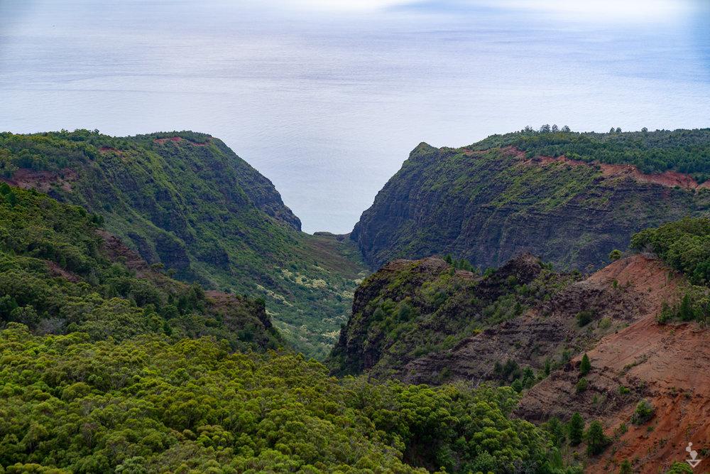 Kauai - Portfolio-06.jpg