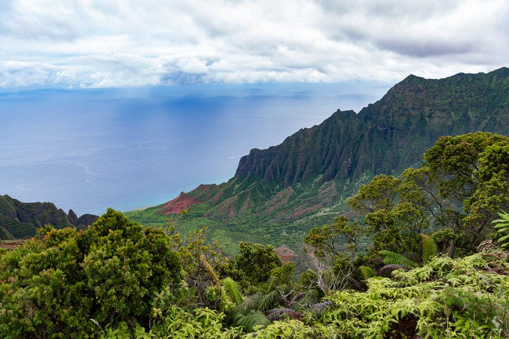 Kauai - Portfolio-14.jpg