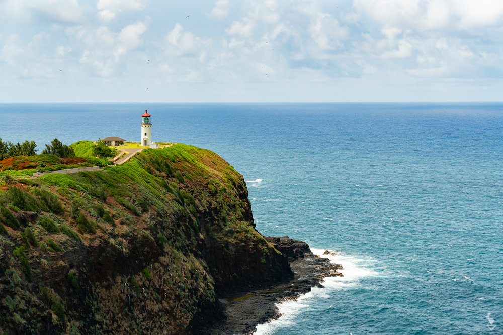 Kauai - Portfolio-20.jpg
