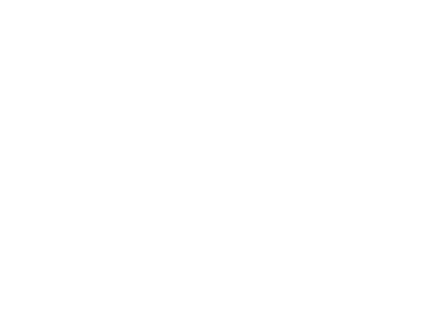 Life's a Beach Shoreline Services