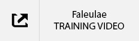 Faleulae Training Video TAB.jpg