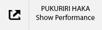 PUKURIRI HAKA Show Performance Tab.jpg
