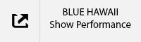 BLUE HAWAII Show Performance Tab.jpg