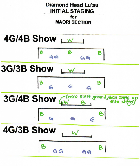 DH_INITIAL_STAGING_FOR_MAORI_SECTION.png
