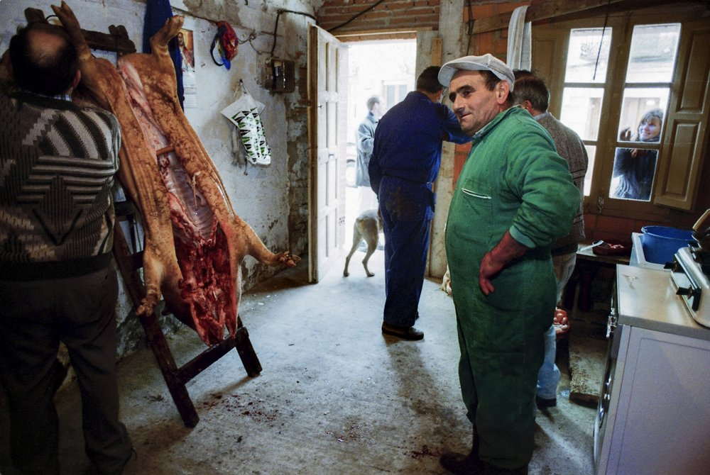 Villagers butcher a pig in their kitchen near Valladolid, Spain in a tradition called 'Matanza de puerco.'