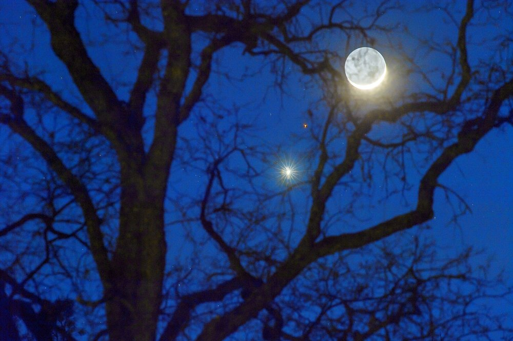 A waxing crescent moon in close proximity in the sky to the planet Venus (bright star in the center of the frame) and Mars (the red speck between two) seen through the branches of a tree in Auburn on Friday, February 20, 2015.