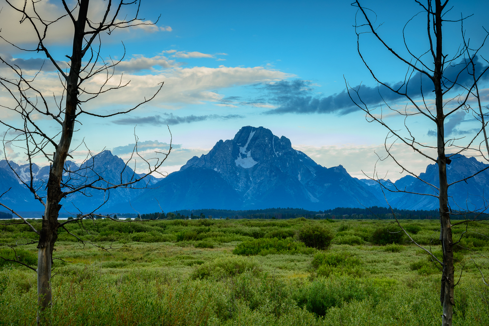 Mount Moran framed withing surrdoing trees of Grand Teton National Park, WY.