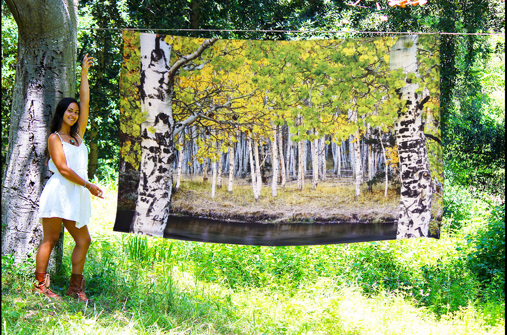 third_eye_tapestry_june_lake.jpg