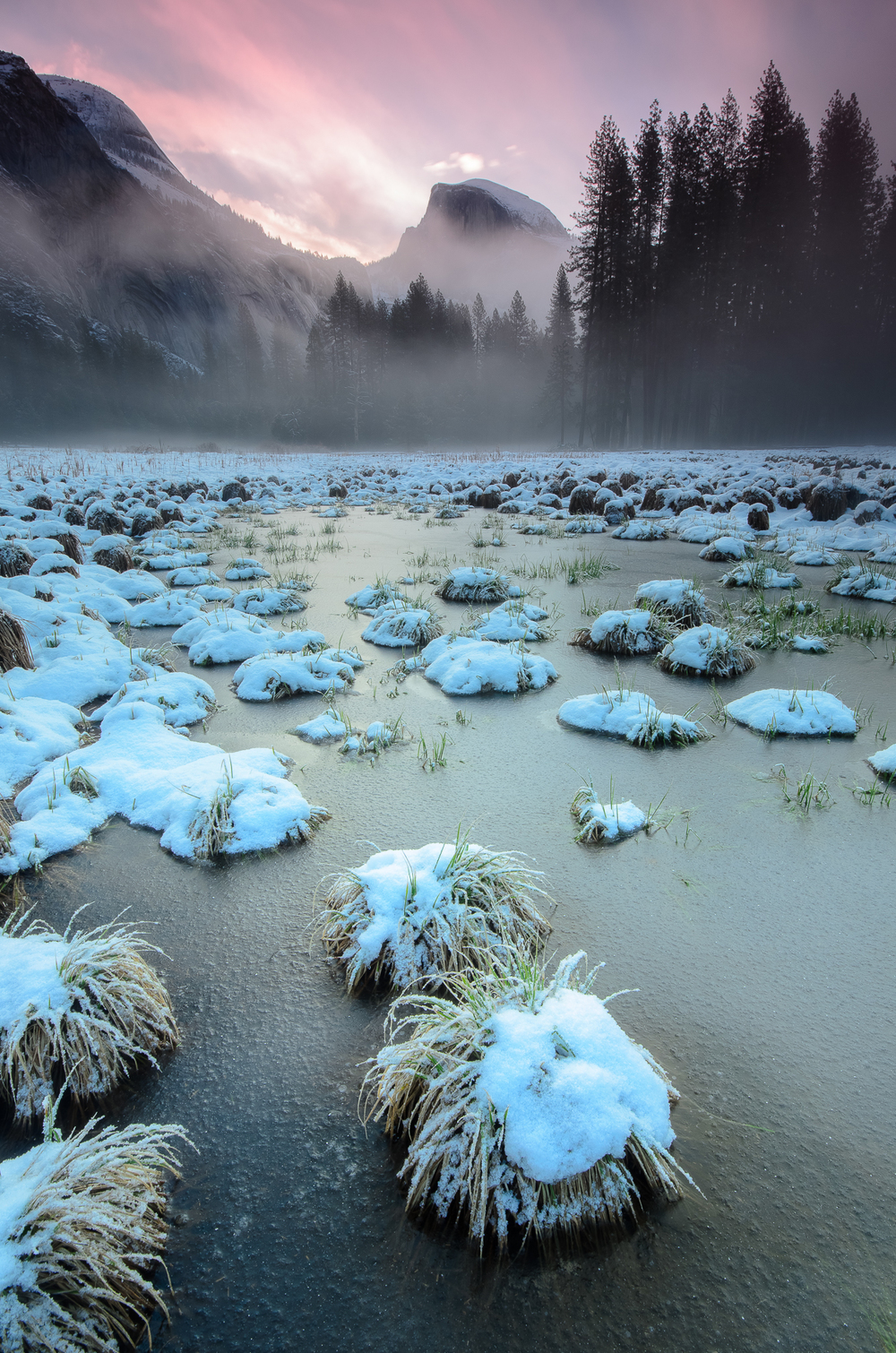 Paper thin ice covers a puddle in Yosemite's Cook Meadow.