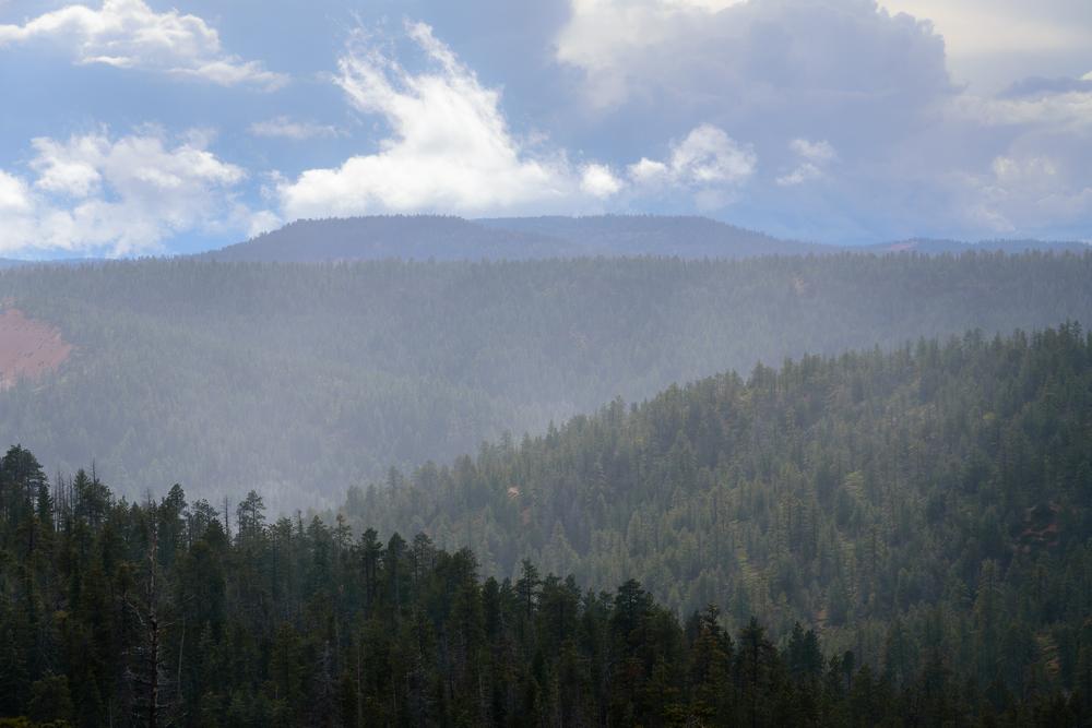 Rain masks. Bryce Canyon National Park, UT