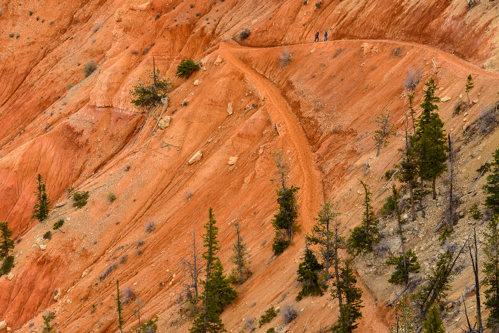 Next time, I'm clawing my way down there like these folks.   Bryce Canyon National Park, UT