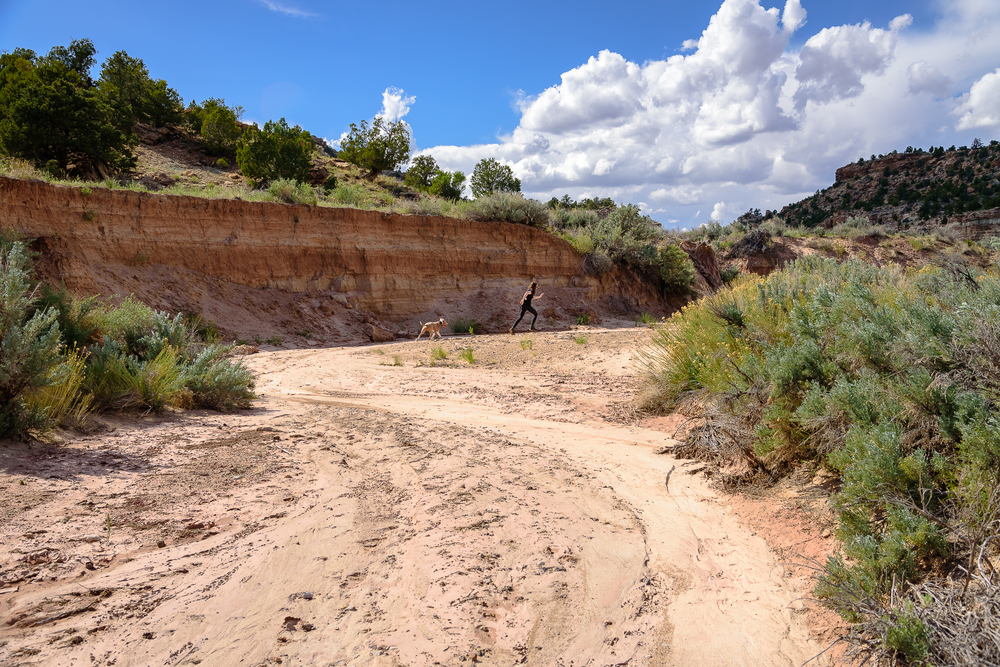 Just a girl and her dog frolicking through the Escalante River wash.  Petrified Forest State Park, Escalante, UT.
