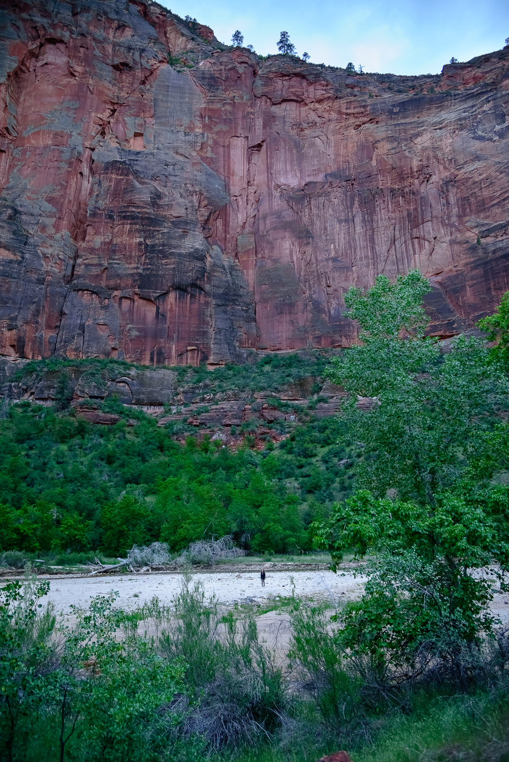 Only enough time for a quick river jaunt.  Zion National Park, UT.