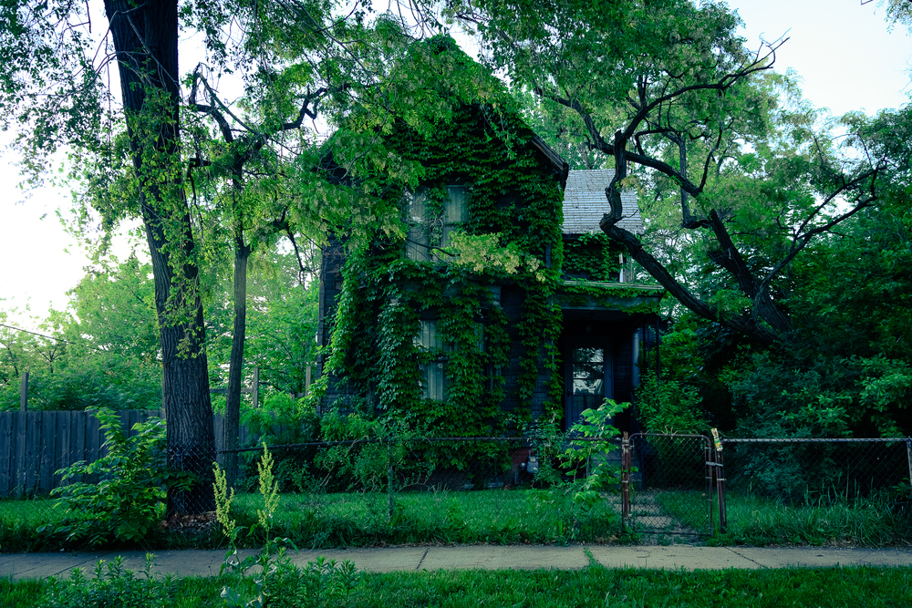 detroit_north_corktown_dreamhouse.jpg