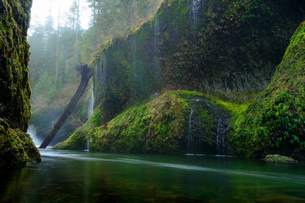 Waist deep and soaking wet.  Punchbowl Falls, OR