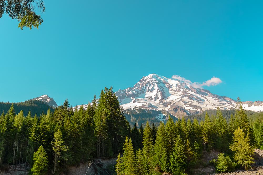 Mt Rainier offering us its best view of the hike. Mt. Rainier National Park, WA.