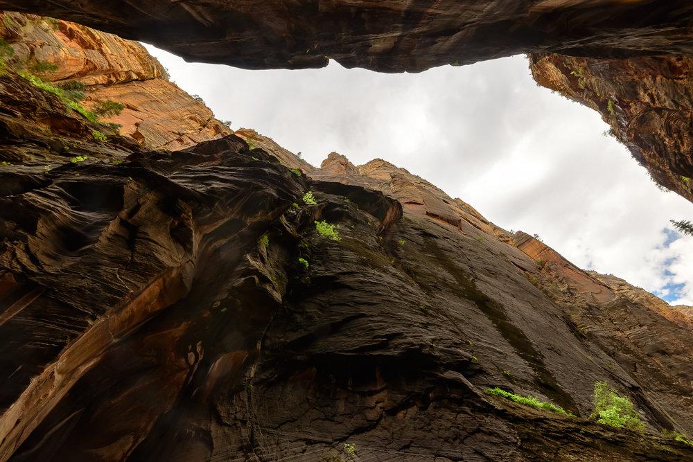 Inner sanctuary. Zion National Park, UT.
