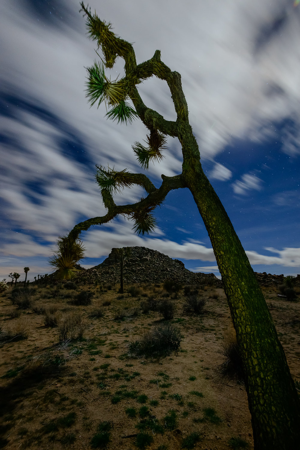 Bend with the clouds.  Joshua Tree National Park, CA.