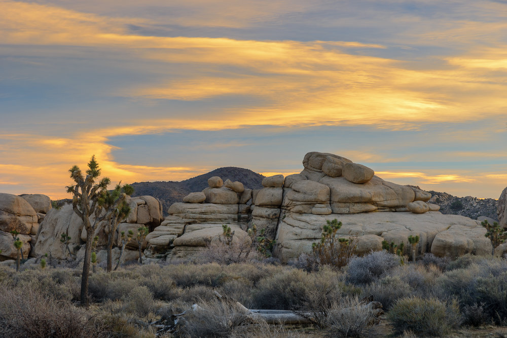 Paint me a picture, desert sky.  Joshua Tree National Park, CA.