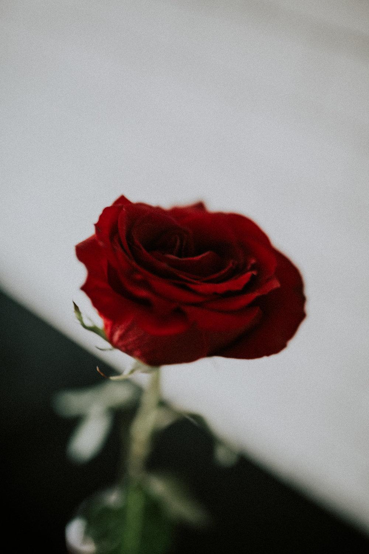 Happy valentine+ Anniversary