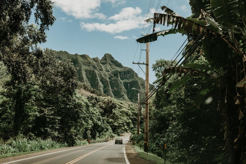 Hawaii Akaness-1.jpg