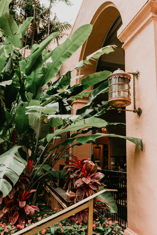 Sydney Lifestyle Photographer Royal Hawaiian-10.jpg