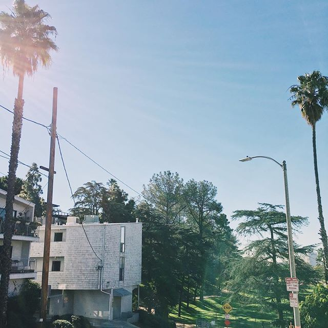 home (n): where your wi-fi connects automatically 🏡🌴 #home #la