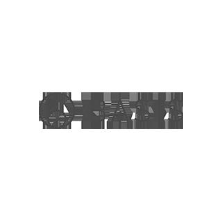 Basis Protocol