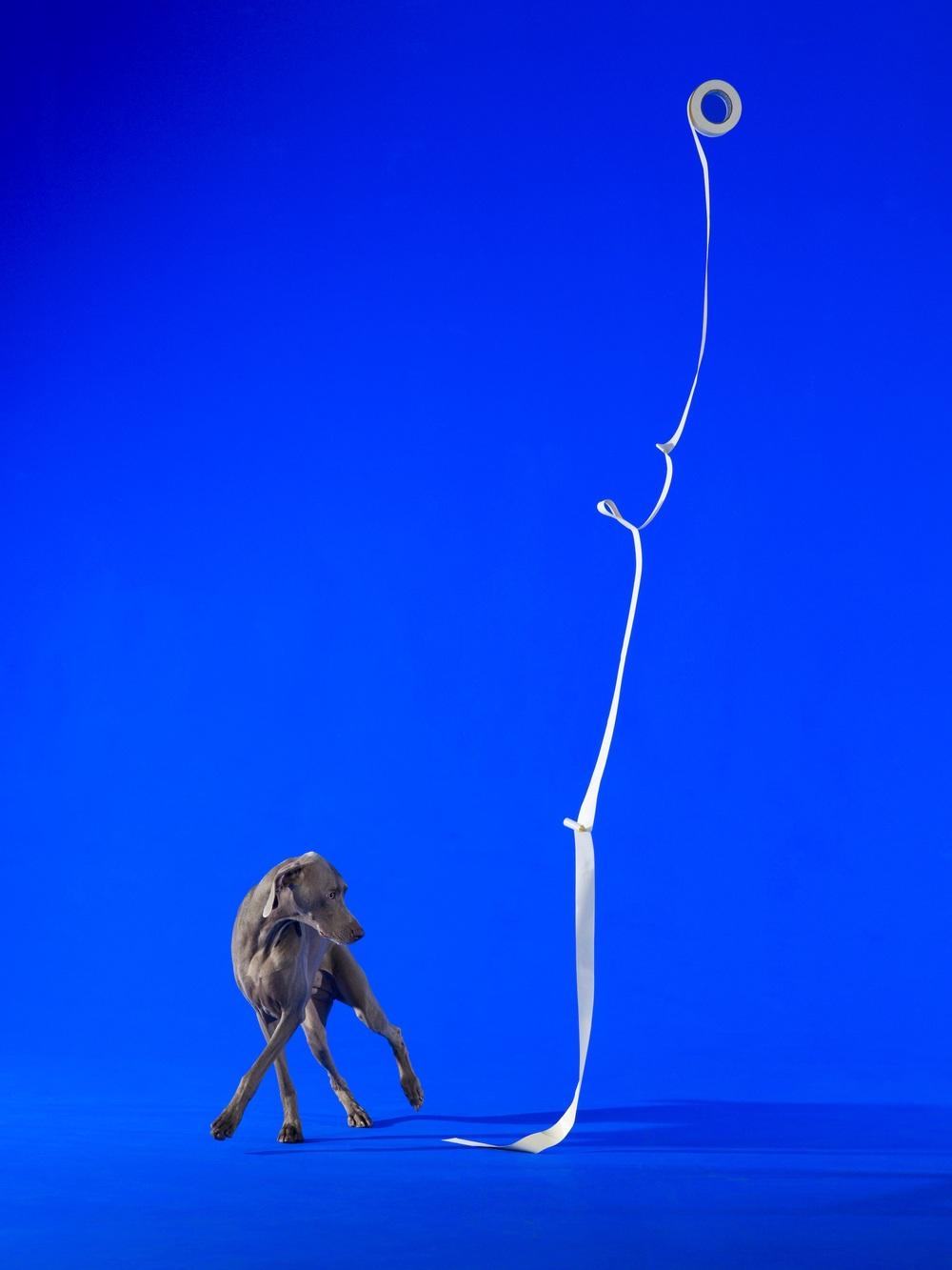 Galerie Woutervan Leeuwen