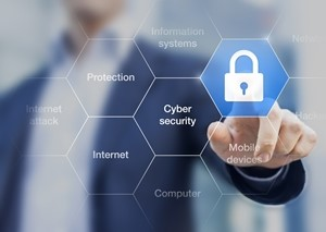 Cybersecurity assessments plays a key role in identifying potential areas of risk
