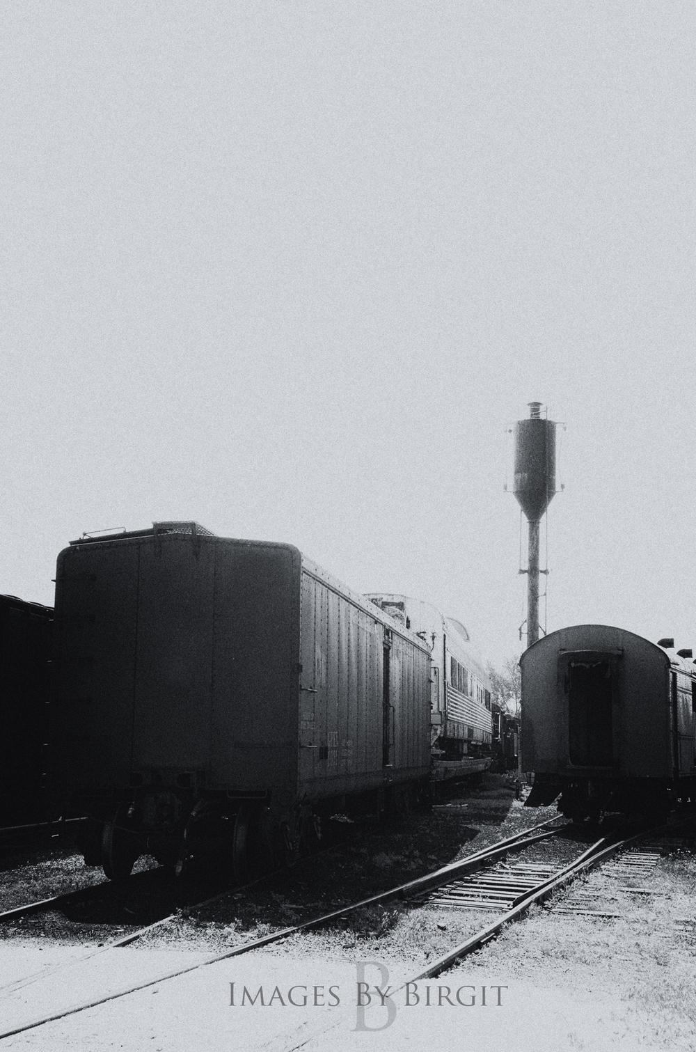 _DSC4230-1.jpg
