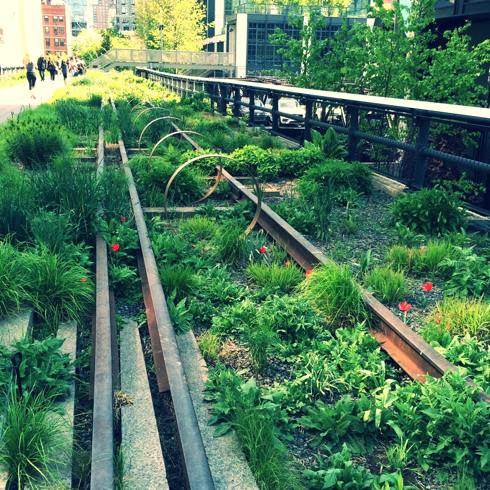 my first view of the highline, New York