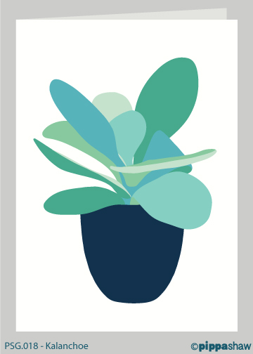 Kalanchoe Greetings Card by Pippa Shaw
