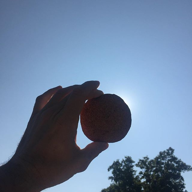 I was able to capture a rare shot of the eclipse for y'all. It looks delicious 😜🍪🌙☀️