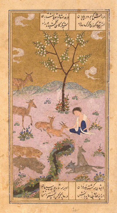 Majnun in the Desert