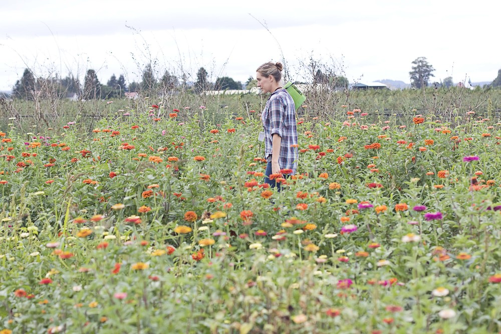 Erin, of Floret, in her dahlia patch