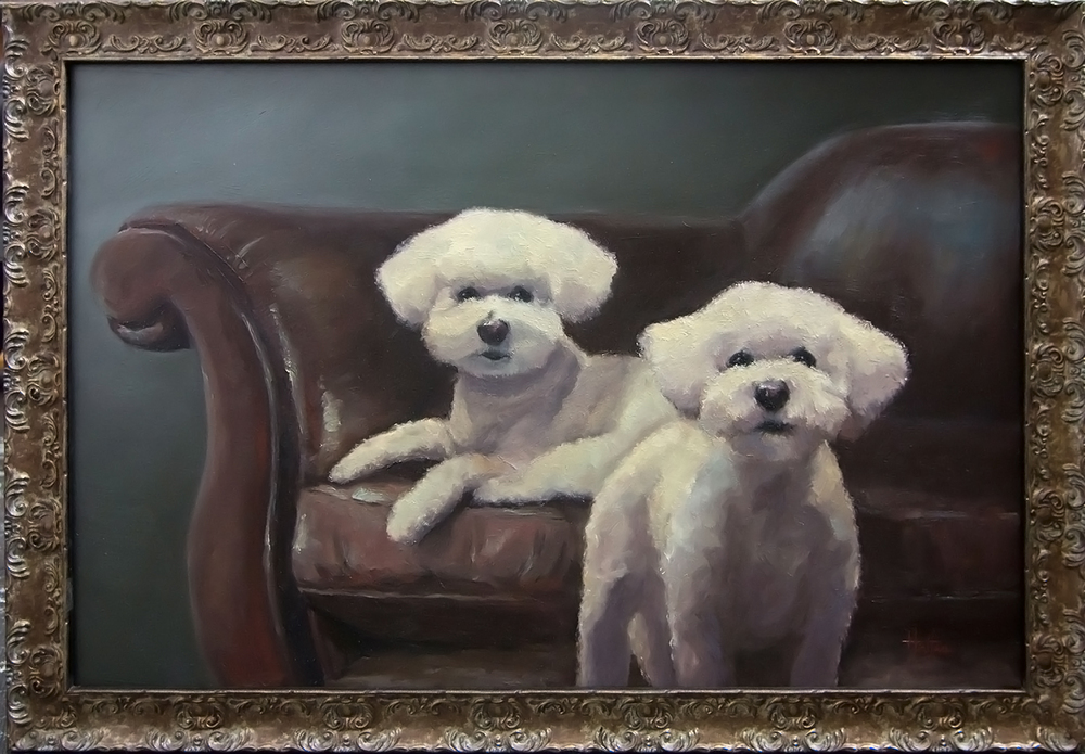 "Bichons Portrait, 36"" x 24"" Oil on Panel  _______   PRICING $"
