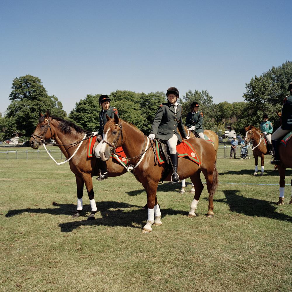 HORSE_FOLK.jpg