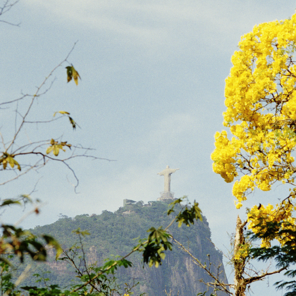 Christ the Redeemer seen from the Botanical Garden.