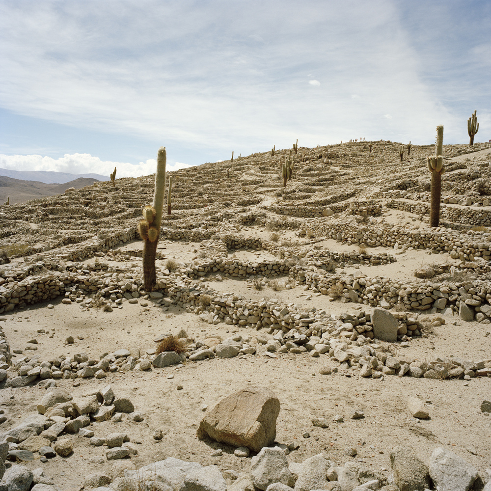Salta Province. Santa Rosa de Tastil. Pre-Incan ruins (14th to 15th century). Altitude at this location is 3,200 meters (10,500 feet).