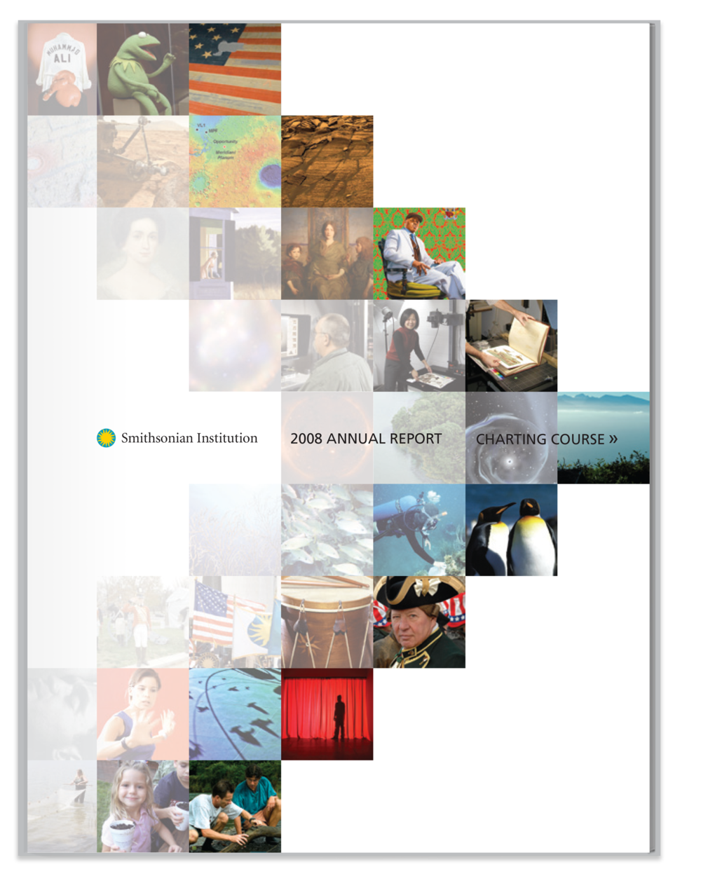 Smithsonian 2008 annual report