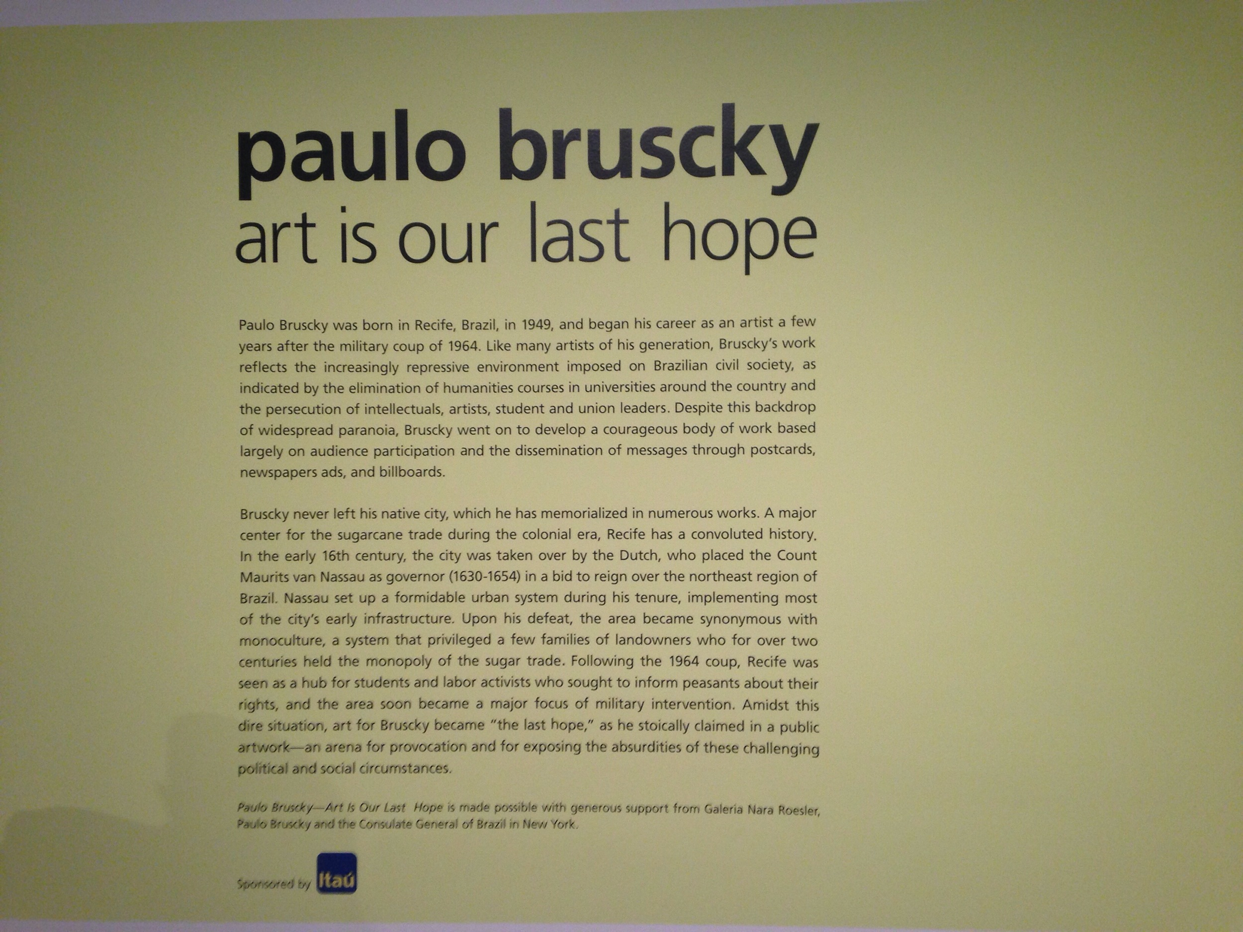 The first exhibit that I visited was Paulo Brusky's. A Brazilian activist and artist, his work is both thought provoking and inspiring.