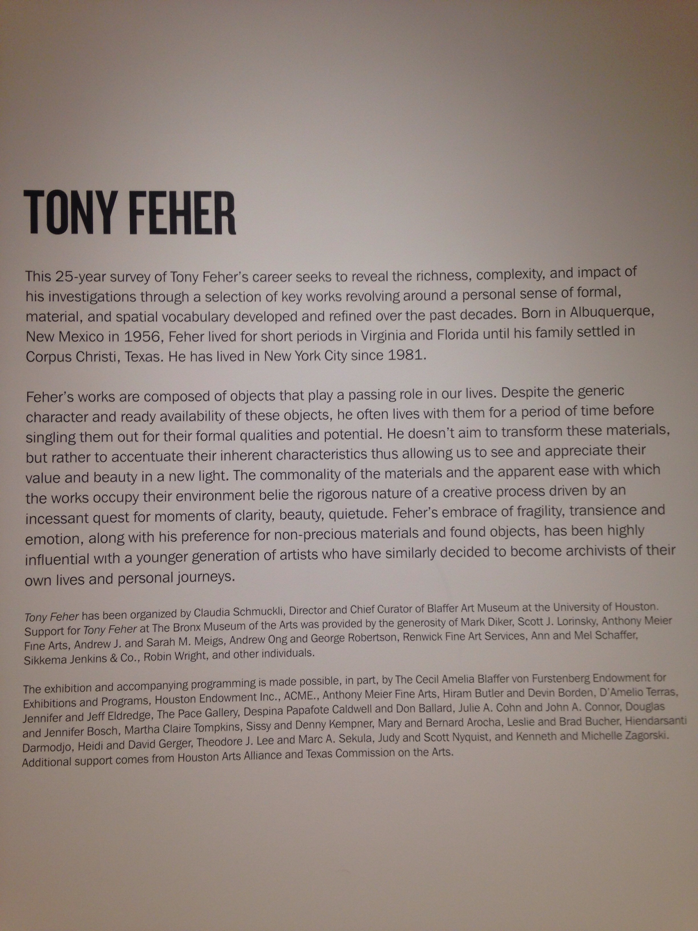 The Tony Feher exhibit was absolutely refreshing. It really made me think about everyday materials as art. This exhibit was all about using/recycling found materials as art. So many possibilities...